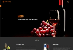 Moto Theme V2 Developer Review – DON'T BUY BEFORE YOU READ : Get 50 Marketing Layouts, 856 Awesome Pages, 55 Unique Demo Sliders, 82 Awesome Shortcodes, 5 Amazon Store Layout, Premium Marketing Tools, Drag & Drop Page Builder